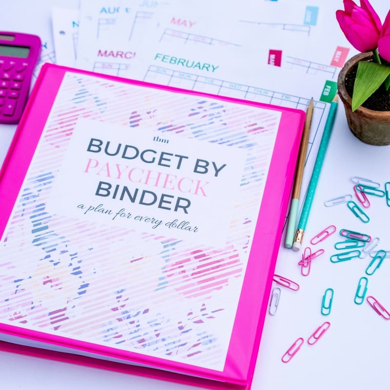 image regarding Printable Budget Binder identify Our 2017 Funds Binder (A Application for Each and every Greenback) - The